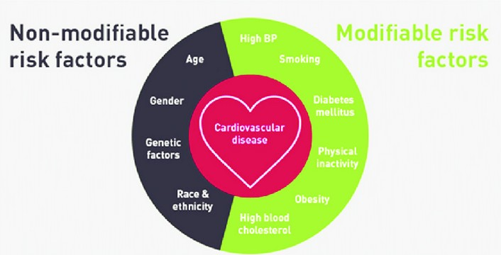 Cardiovascular Disease Risk Factors - What Is It?