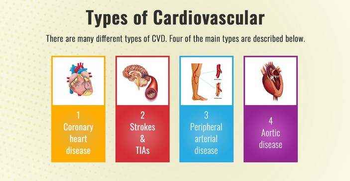 How to Choose Cardiovascular Disease Types